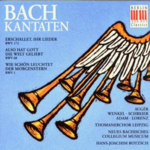 Johann Sebastian Bach - Bach: Cantatas BWV 51/99/202