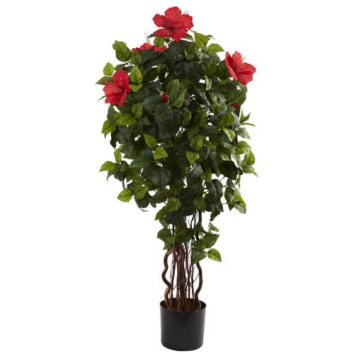4 Hibiscus Tree