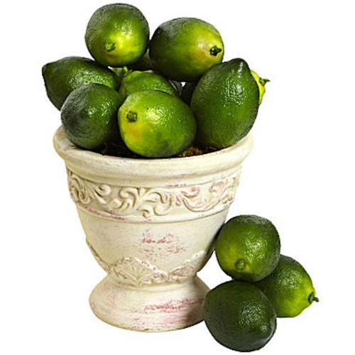 Nearly Natural Faux Limes Set Of 12