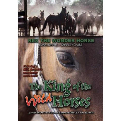 The King of the Wild Horses [DVD] [1924]