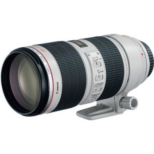 Canon EF 70-200mm f/2.8L IS II USM Lens, USA - Includes Cleaning Kit, Capleash