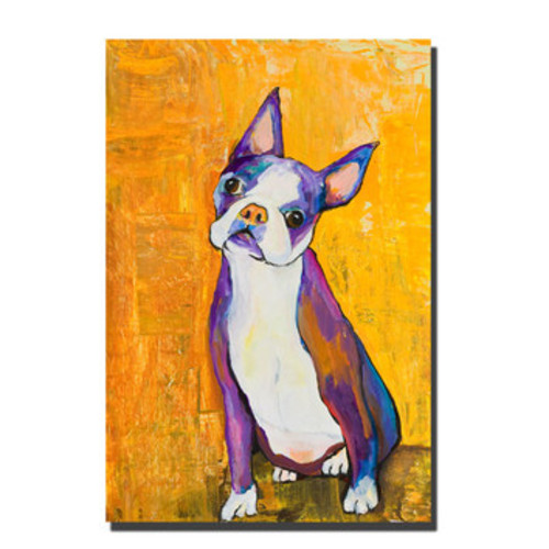 'Cosmo' by Pat Saunders-White Framed Painting Print on Wrapped Canvas