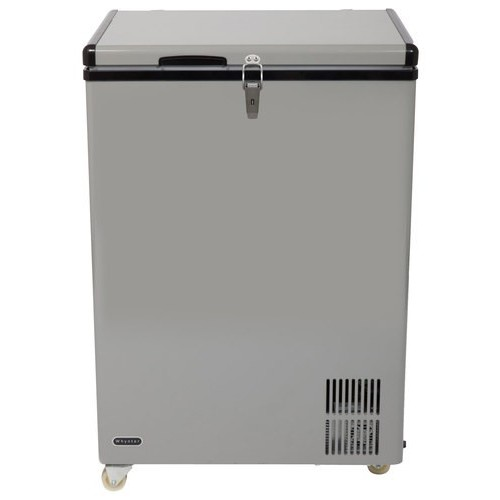 Whynter 3.17 cu. ft. Portable Refrigerator/Freezer in Gray