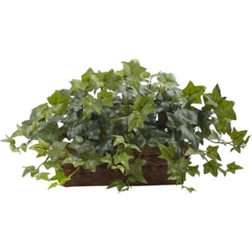 Tori Home Puff Ivy Desktop Plant in Ledge Basket