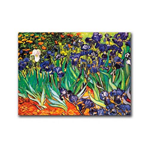 Irises at Saint-Remy by Vincent van Gogh Canvas Art