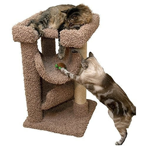Cat Condos Premier Cat Scratch and Lounge, Brown : Pet Supplies [Brown]