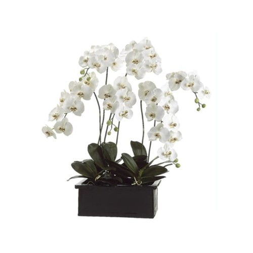3.5' Potted Artificial White Silk Phalaenopsis Orchid Plant