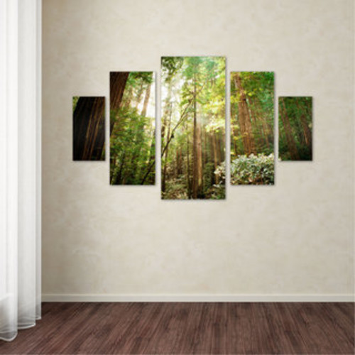Ariane Moshayedi 'Muir Woods' Three Panel Set Canvas Wall Art - Multi