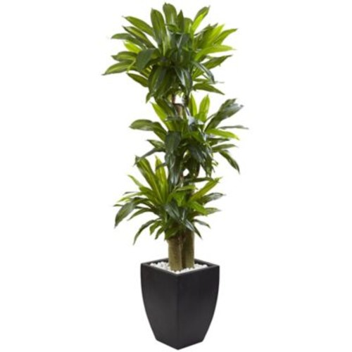 Nearly Natural 5.5-Foot Cornstalk Dracaena Tree in Slate Planter