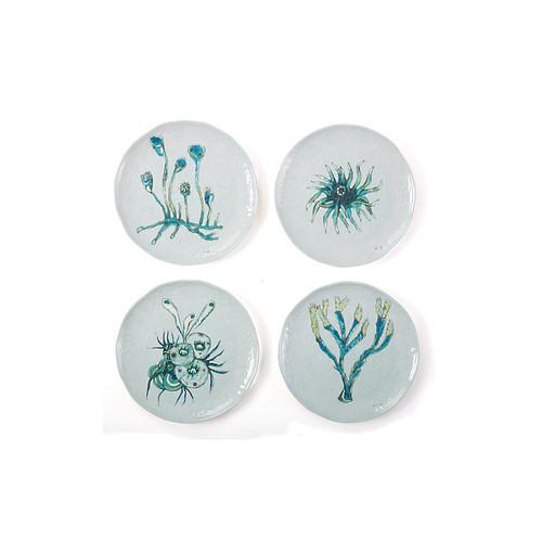 Asst. of 4 Sea Life Melamine Plates, Multi
