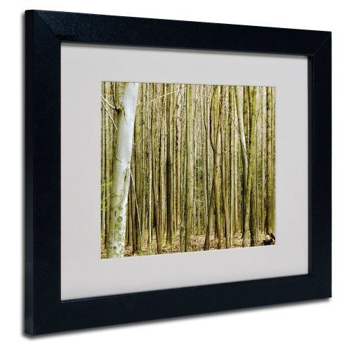 Forest Floor Spring by Kathie McCurdy Canvas Artwork in Black Frame, 11 by 14-Inch