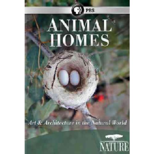 Nature: Animal Childhood (DVD)