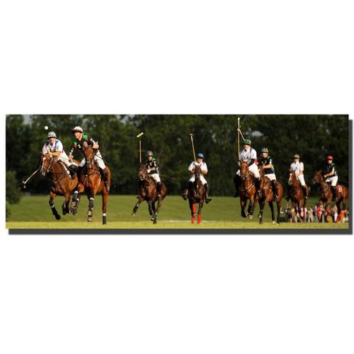 Trademark Fine Art Preston, 'USA Polo' Canvas Art 16x47 Inches