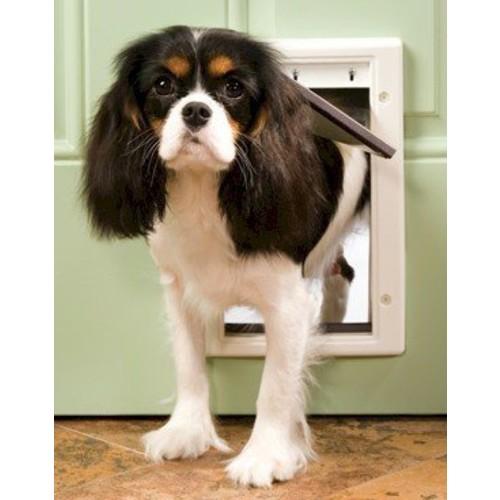 PetSafe Plastic Dog Door - Small