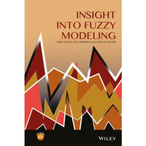 Insight into Fuzzy Modeling / Edition 1