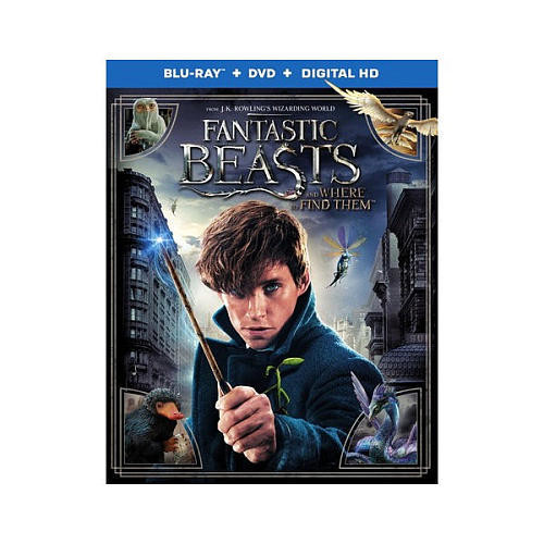 Fantastic Beasts and Where to Find Them [Blu-Ray][DVD][Digital HD]