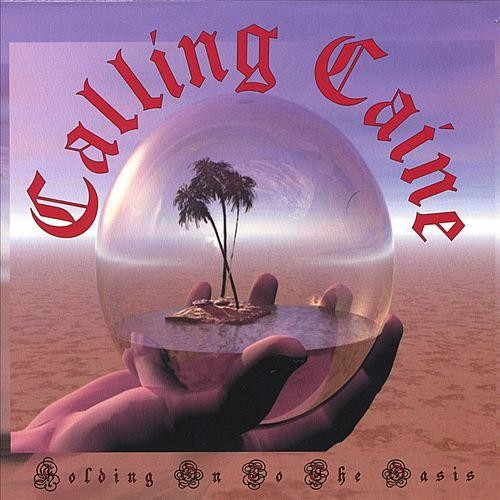 Holding on to the Oasis [CD]