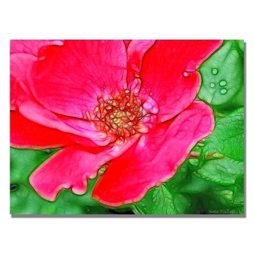 Red Rose by Kathie McCurdy, 35x47-Inch Canvas Wall Art [35 by 47-Inch]