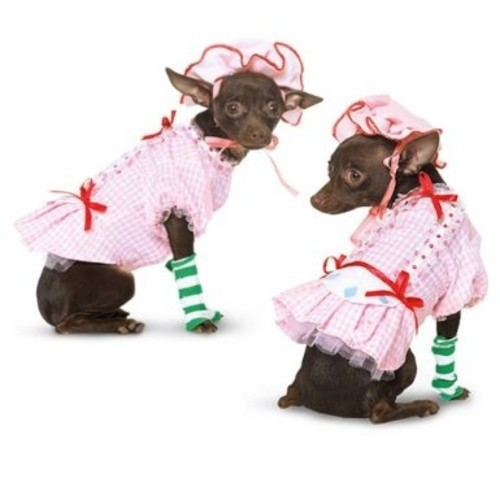 Country Pup Costume, Small 10-12
