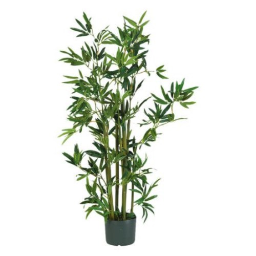 4' Bamboo Silk Plant