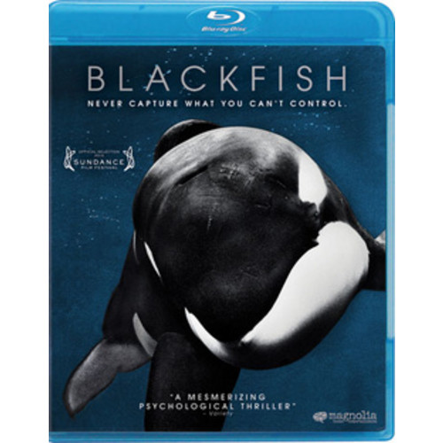 MAGNOLIA HOME ENTERTAINMENT Blackfish (Blu-ray)