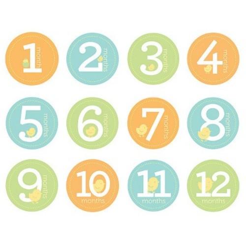 Pearhead Baby Milestone Stickers - Gender Neutral