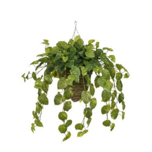 House of Silk Flowers Inc. Artificial Real Touch Pothos Hanging Plant in Beehive Basket