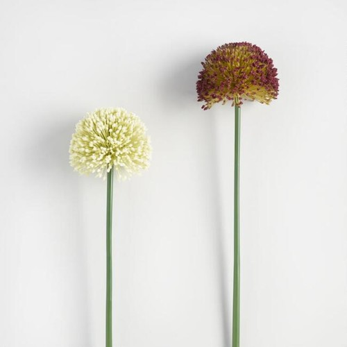 Faux Allium Stems Set of 2