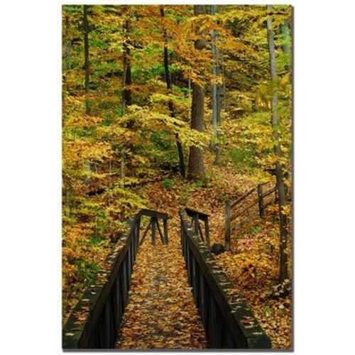 Fall Bridge by Kurt Shaffer, 16x24-Inch Canvas Wall Art [16 by 24-Inch]