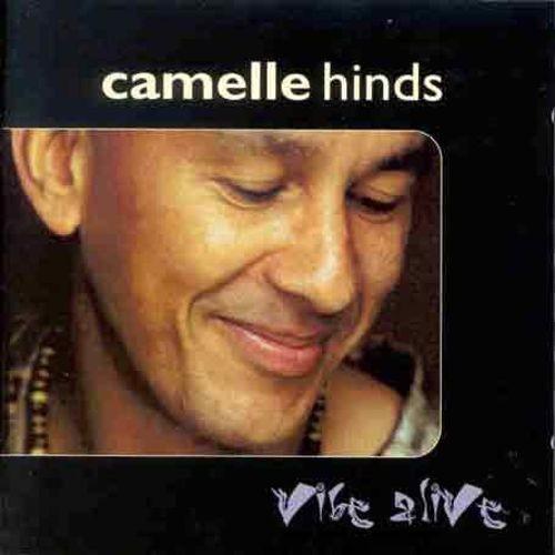 Vibe Alive [LP] - VINYL