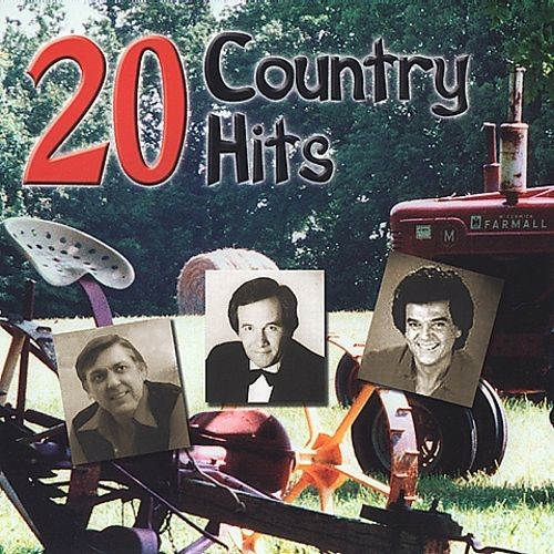 20 Country Hits [CD]