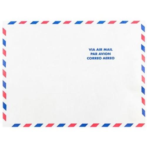 JAM Paper Tyvek Envelopes, 10