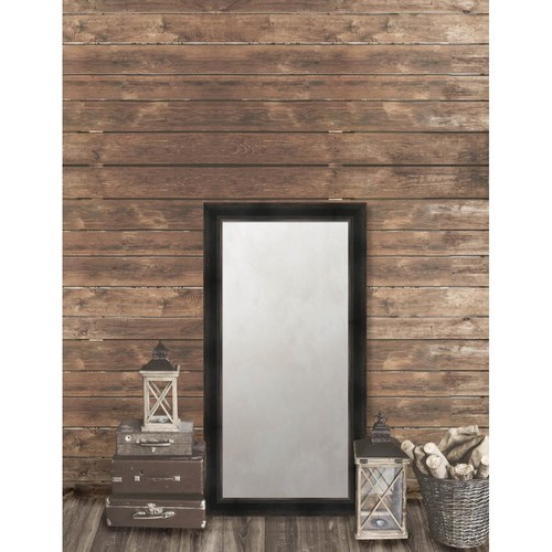 Larson-Juhl Pinnacle 25.625 in. x 49.625 in. French Antique Framed Antique Mirror