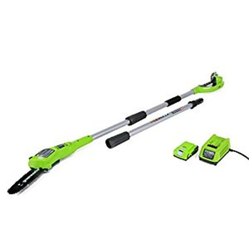 GreenWorks 20352 24V 8-Inch Cordless Pole Saw, 2Ah Battery and Charger Included [Includes 24V 2amp Battery and Charger]