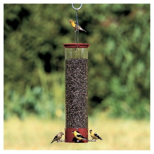 Droll Yankees Yankee Dipper Collapsing Straight Perch Squirrel Proof Bird Feeder - Red - 21