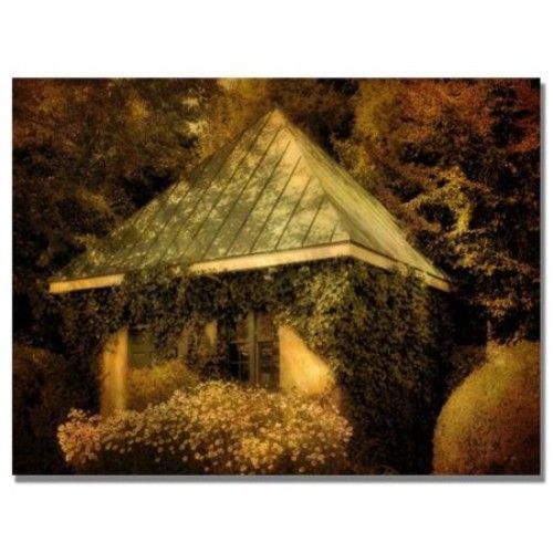 Lois Bryan 'Forgotten Shed' Canvas Art