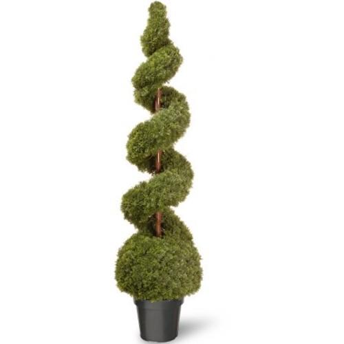 National Tree 60