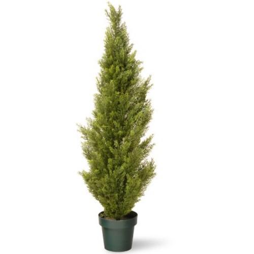 National Tree 48
