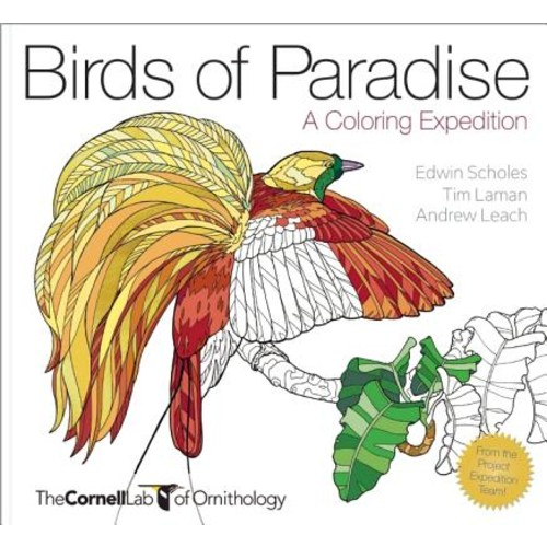 HEAVEN AND EARTH DESIGNS Birds of Paradise