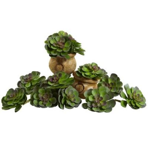 Nearly Natural 6105-GB-S12 Echeveria Succulent Plants 6 x 5 inch, Green & Burgund