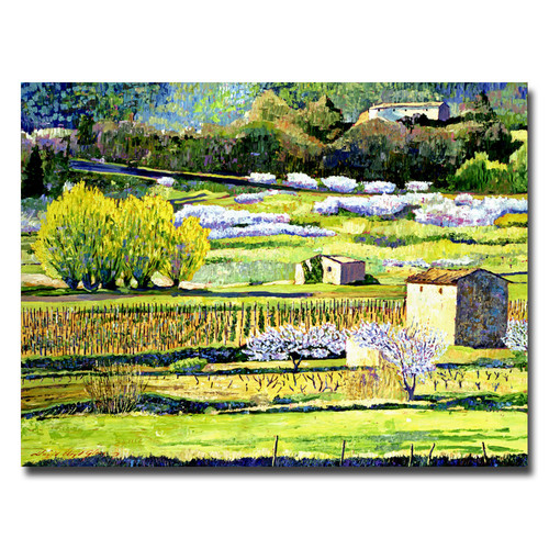Trademark Global David Lloyd Glover 'Bordeaux Vineyards in Spring' Canvas Art [Overall Dimensions : 18x24]