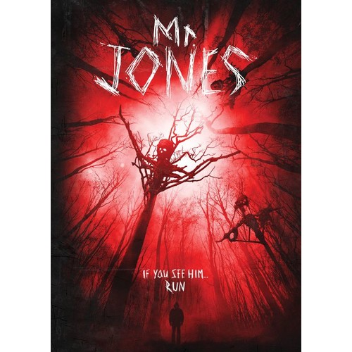 Mr. Jones [DVD] [2013]