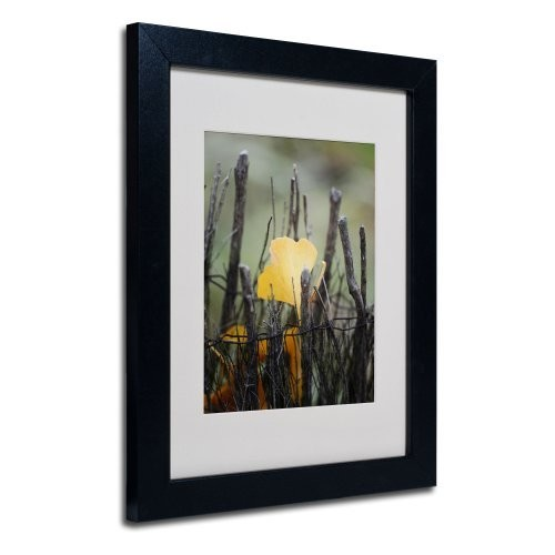Prisoner Fall Canvas Wall Art by Philippe Sainte-Laudy, Black Frame, 11 by 14-Inch [11 by 14-Inch]