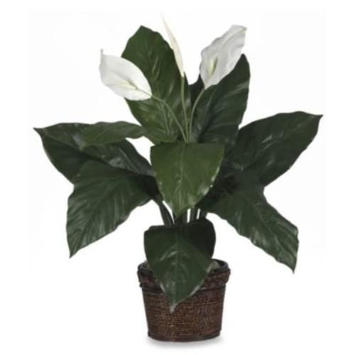 Nearly Natural Spathyfillum w/Wicker Silk Plant