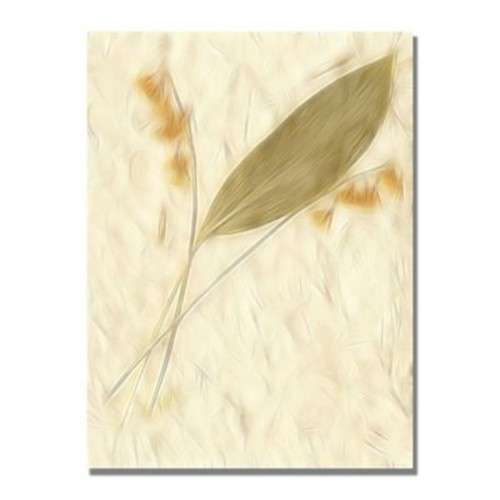Trademark Fine Art Kathie McCurdy 'Morning Glories' Canvas Art