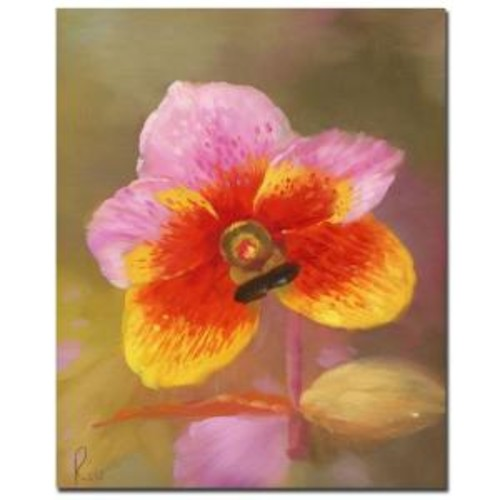 Trademark Fine Art 35 in. x 47 in. Orange-Pink Orchid Canvas Art