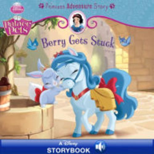 Berry Gets Stuck: A Princess Adventure Story: A Disney Read-Along