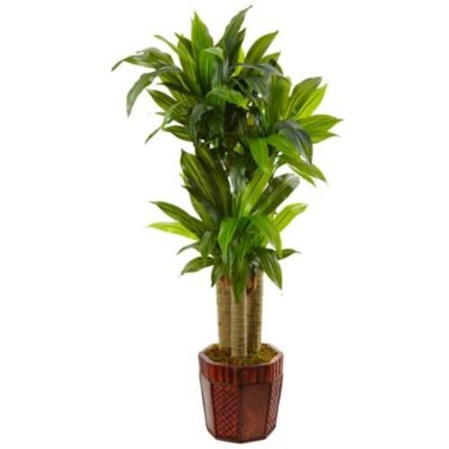 Nearly Natural 4.5-Foot Cornstalk Dracaena Tree in Octagonal Bamboo Planter