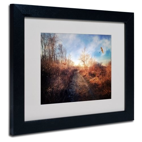 Blast of Wind Canvas Wall Art by Philippe Sainte-Laudy, Black Frame, 11 by 14-Inch [11 by 14-Inch]