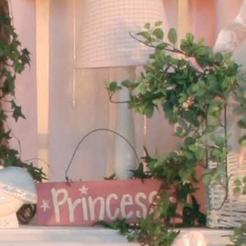 Princess Pink Lampshade